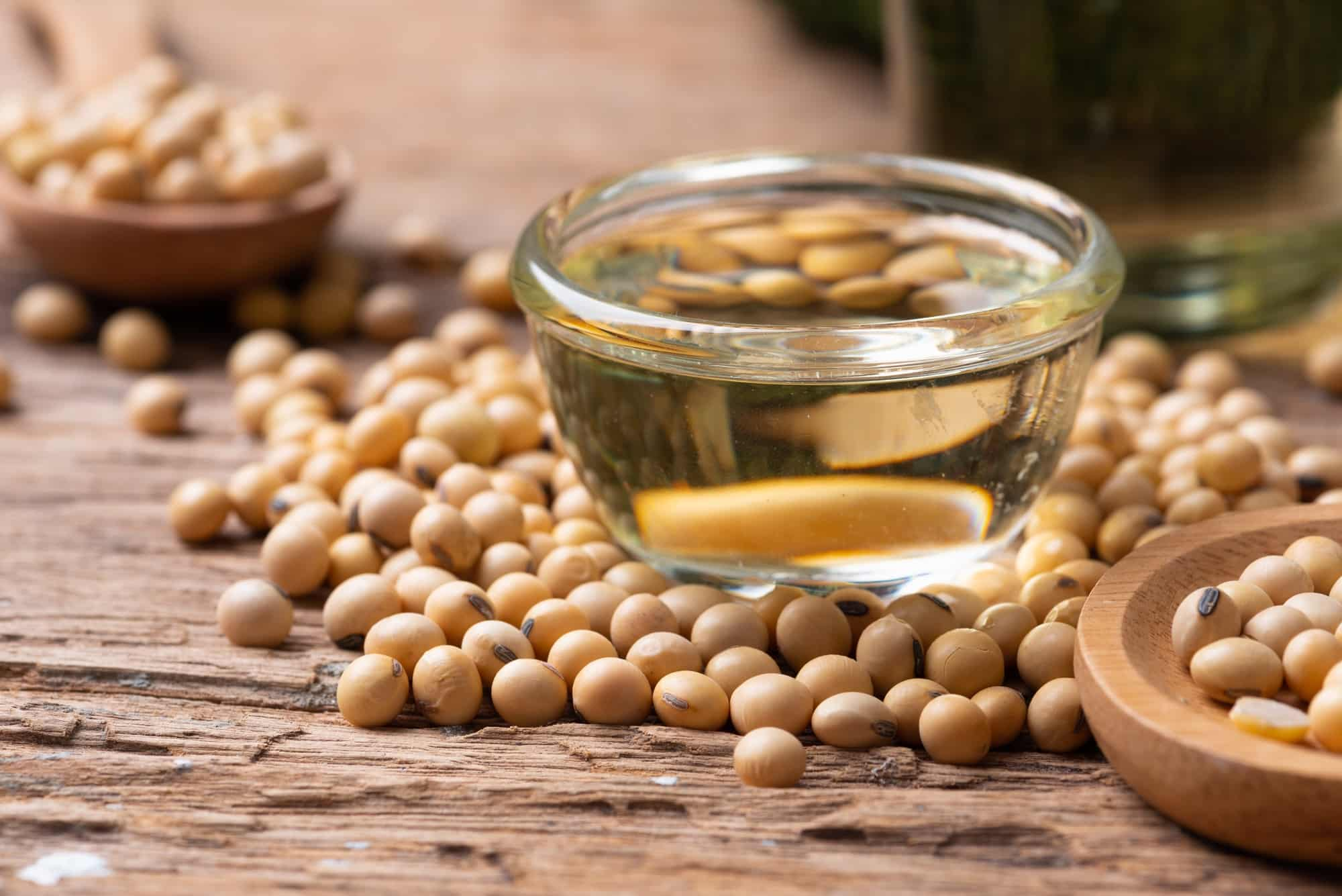 Soybean Oil Substitute